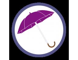 Фиолетовые зонты трости (2)