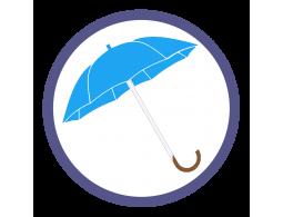 Голубые зонты трости (4)