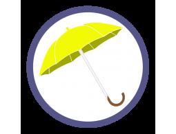 Желтые зонты трости (7)