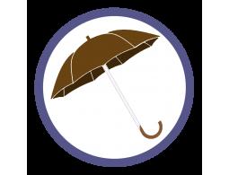 Коричневые зонты трости (1)