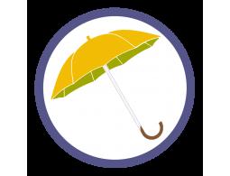 Оранжевые зонты трости (5)