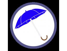 Синие зонты трости (27)