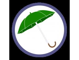 Зеленые зонты трости (12)