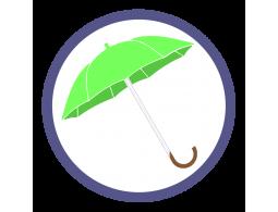 Зонты трости цвет Зеленое яблоко (3)