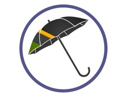 Зонты трости с полноцветным нанесением (16)