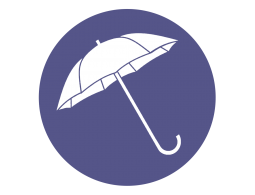 Все зонты трости (356)