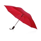 Зонт складной Андрия