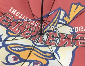 Купить полноцветные зонты оптом в «Зонтовике»